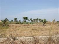 PLOT OF LAND FOR SALE AT OLD YUNDUM 20 X 25 METERS FOR D550,000