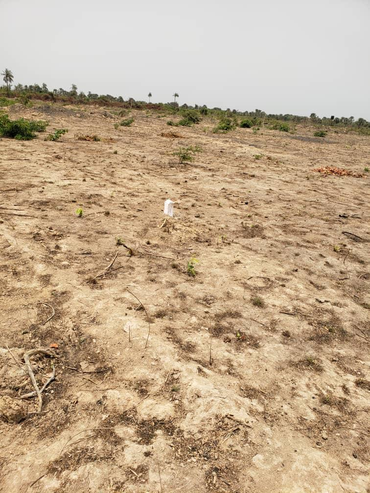 Sanyang Seaview Empty plots of land for sale 20 x 20 meters for D250,000 cash payment and D300,000 mortgage payment it is located 150 meters from the highway and out of TDA in a residential area of Sanyang
