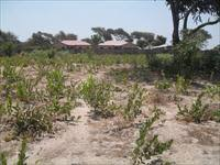 EMPTY LAND FOR SALE AT SALAGI 20 X 20 METERS FEW METERS FROM THE HIGHWAY