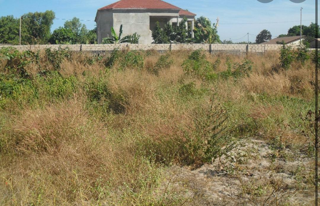 THE CHEAPEST AND THE ONLY EMPTY PLOTS OF LAND AVAILABLE FOR SALE AT BRUFUT HEIGHT 20 X 25 METERS FOR D4,500,000