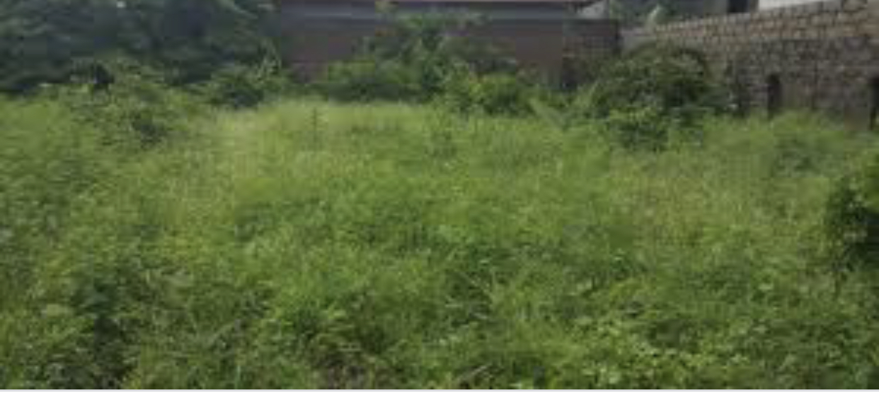 Empty plot of land for sale in manjai 17 x 39 meters close to the highway
