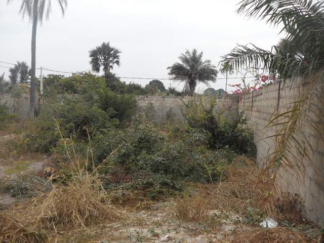EMPTY LAND FOR SALE AT FAJARA 30 X 30 METERS FOR D6.5MILLION