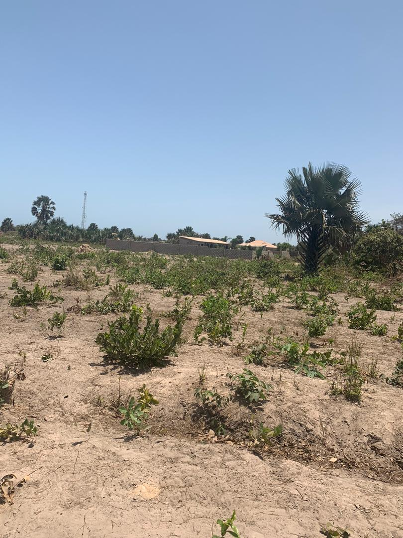 EMPTY LAND FOR SALE AT SALAGI 200 METERS FROM THE HIGHWAY SIZE IS  29 x 27 x 25 x 15 METERS  PRICE IS D650,000