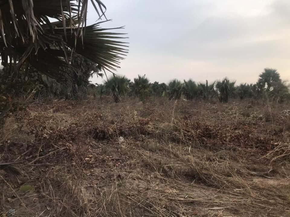Empty land for sale at sanyang 20 x 20 meters few meters from the higway for D250,000