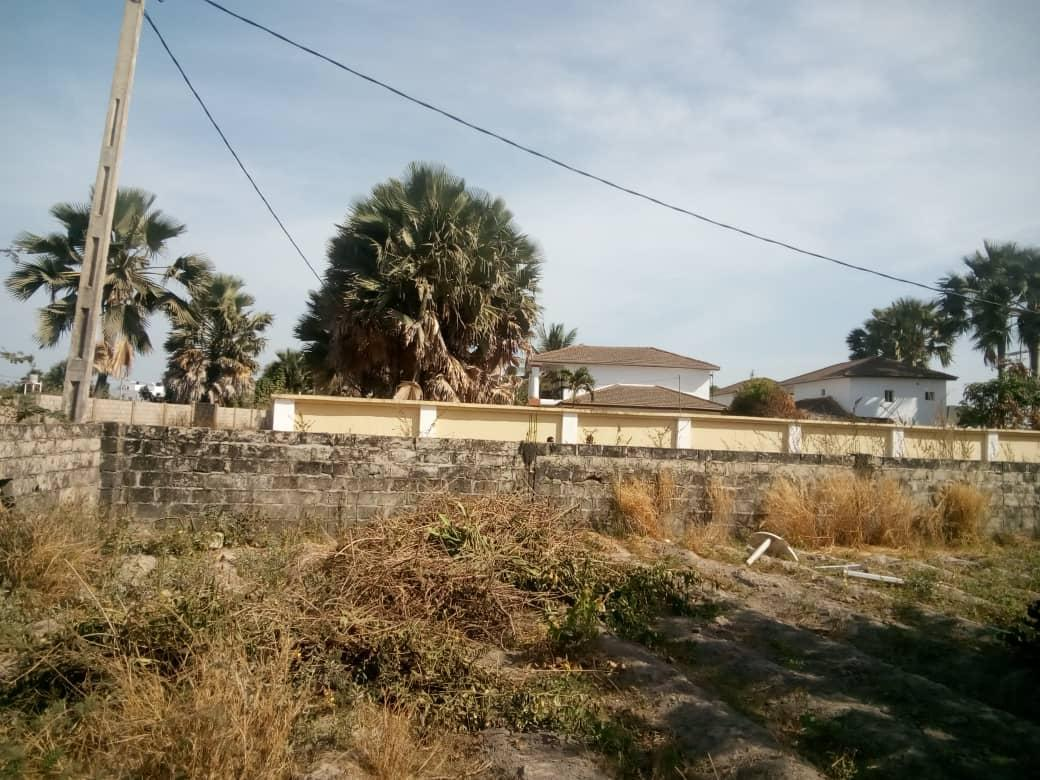 Empty land for sale in Bijilo