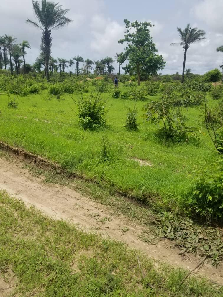 Empty land for sale at sanyang few meters from the highway