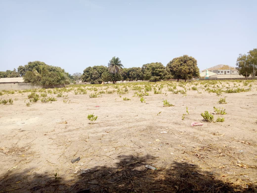 empty plots of land available in various locations of the Gambia with different property prices