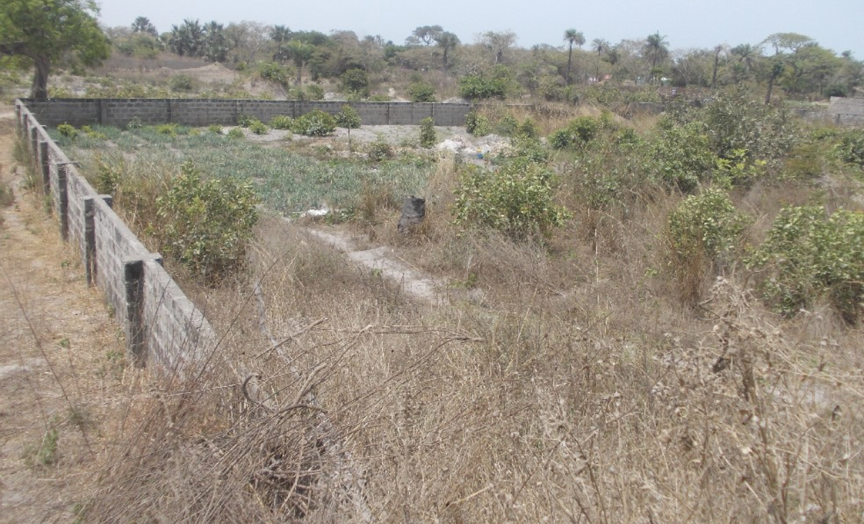 seaview land of 20 x 20 meters for sale at sanyang with water and electricity